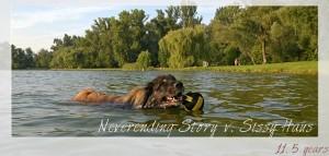 Neverending-Story v. Sissy-Haus3